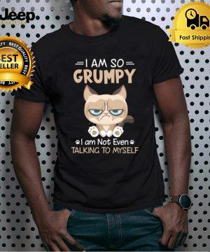 I am So Grumpy I am Not Even Talking To Myself Fun
